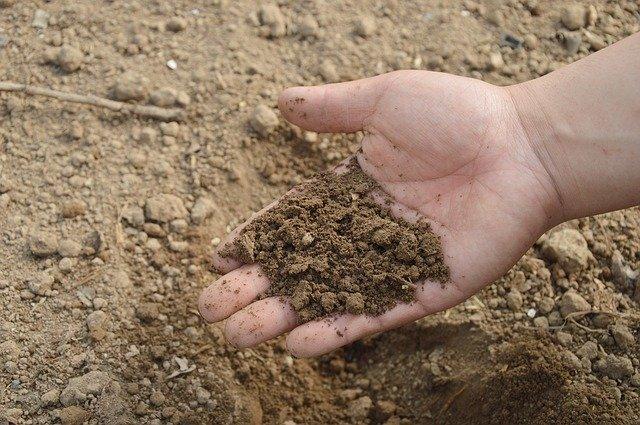 improve soil nutrient levels