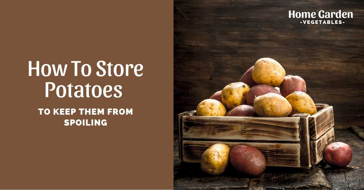 How to Store Potatoes
