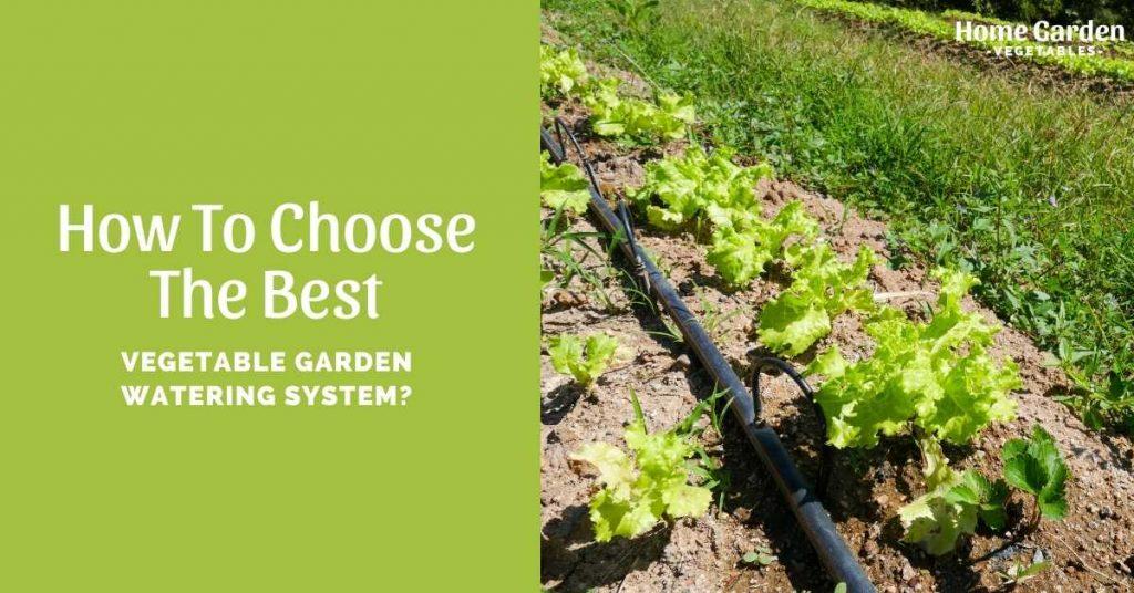 Vegetable Garden Watering System