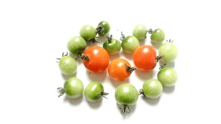 how to turn green tomatoes red