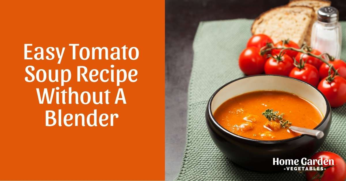 Easy Tomato Soup Recipe Without A Blender