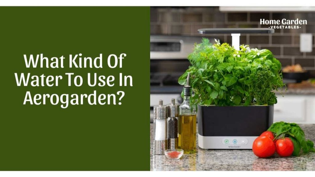 what kind of water to use in aerogarden